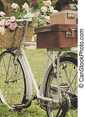 葡萄收获期, 自行车, 在上, the, 领域