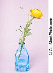 葡萄收获期, 黄色, 瓶, ranunculus, 背景, 花