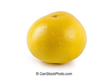 葡萄柚, 上, a, 白色 背景