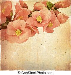 葡萄酒, 植物, 背景, 由于, 桃紅色花, 上, a, 棕色的背景, 老, 紙, 公民, 為, 任何, ......的, 你, 項目