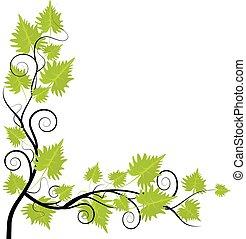葡萄, 葉子, 框架