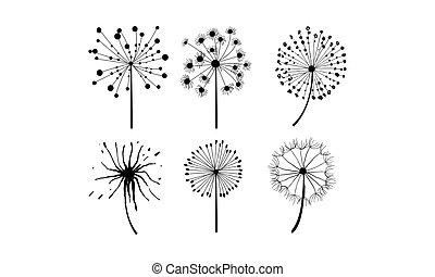 蒲公英, 集合, 線性, 絨毛狀, style., 主題, 矢量, 花6, 植物, seeds.