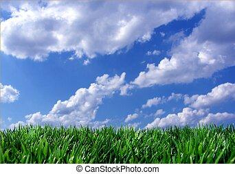 蓝的天空, 草, 绿色