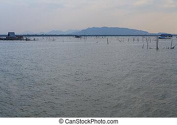 蓝色, 反映, 木制, 天空, 防波堤, 多云, 湖, 仍然是, 日落, water., 码头, 或者