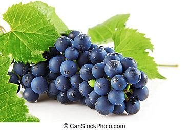 蓝色, 葡萄, 带, 绿色的树叶, 隔离, 水果