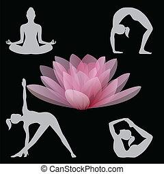 蓮花, 以及, 瑜珈位置, 插圖