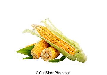 蔬菜, lea, 玉米, 綠色, 新鮮