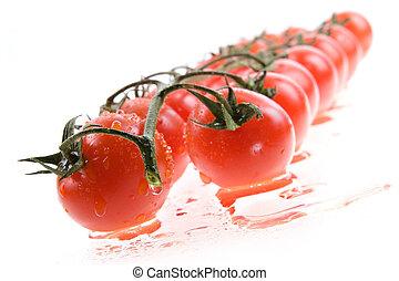 蕃茄, 被隔离