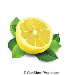薄く切られる, 白, レモン, 隔離された