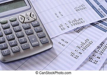 薪金, 工资单, 细节