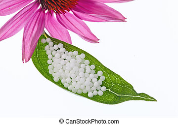 薬, 小球体, 選択肢, homeopathy.
