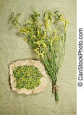 薬, herbs., melilot., dried., 草, 薬効がある, phytotherapy