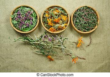 薬, herbs., raspberry., dried., 草, 薬効がある, phytotherapy