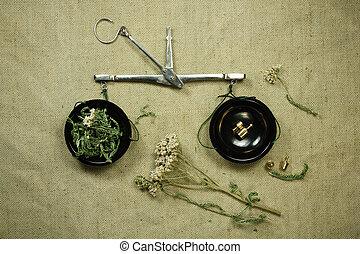 薬, yarrow., herbs., dried., 草, 薬効がある, phytotherapy