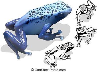 藍色毒物青蛙, 飛奔