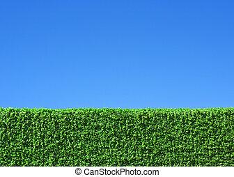 藍色的天空, 領域, 綠色的背景, 在下面, 草