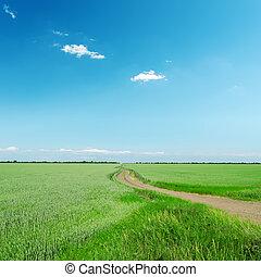 藍色的天空, 領域, 綠色, 在下面, 路
