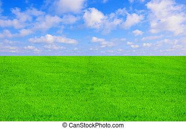 藍色, 太陽, 天空領域, 日光, 綠色的草
