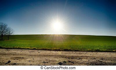 藍色, 太陽, 天空, 綠色的領域