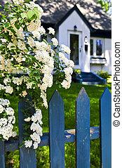 藍色, 柵欄, 由于, 懷特花