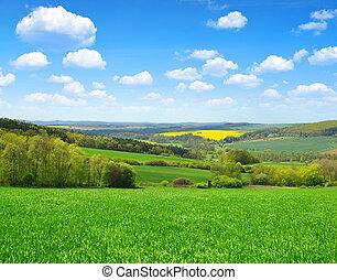 藍色, 領域, 綠色, sky.