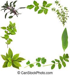 藥草, 葉子, 摘要, 邊框