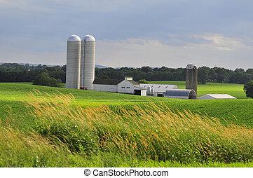 蘭開斯特縣, 農場