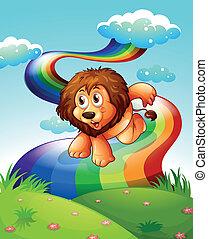 虹, ライオン, 丘の上