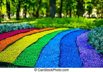 虹, 地球