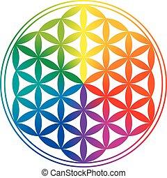 虹, 生活, 花, gradients