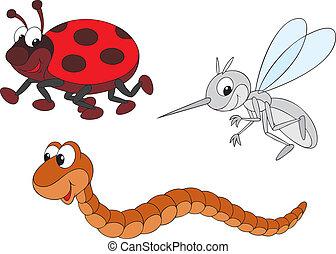 蚊, てんとう虫, みみず