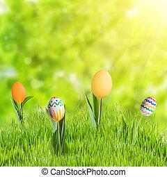 蛋, 草, 復活節, 花