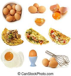 蛋, 被隔离, 彙整