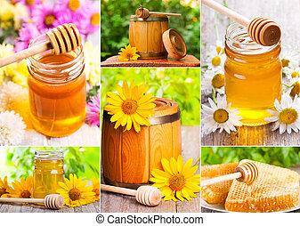 蜂蜜, 拼貼藝術