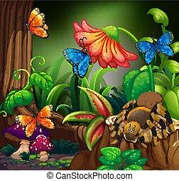 蜘蛛, 森林, 蝴蝶