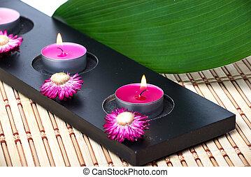 蝋燭, 花, 葉, 緑, spa.
