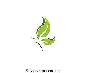 蝴蝶, 叶子, 设计, 样板, 标识语, 绿色