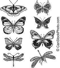 蝶, グラフィック, イラスト