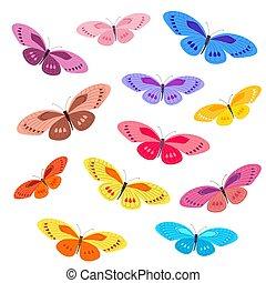蝶, デザイン, コレクション, カラフルである, あなたの