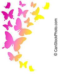 蝶, デザイン