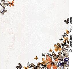蝶, ペーパー, 古い