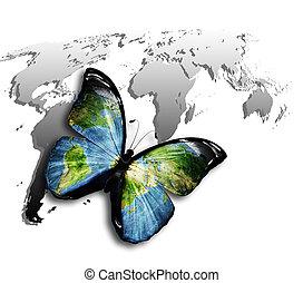 蝶, 世界