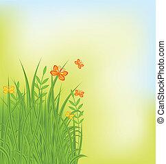 蝶, 夏, 草, 背景