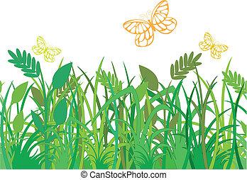 蝶, 草, 緑