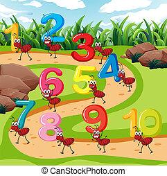 蟻, 届きなさい, 数, 10