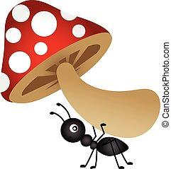 蟻, 届く, きのこ