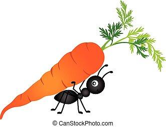 蟻, 届く, ニンジン