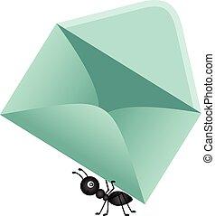蟻, 届く, 封筒