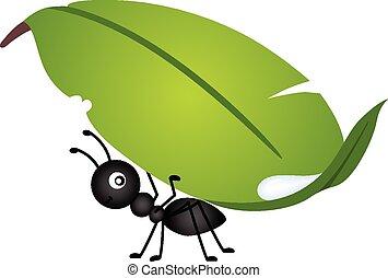 蟻, 届く, 葉