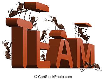 蟻, 建物, チームワーク, チーム